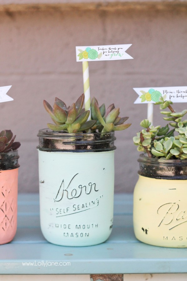 DIY-Distressed-Mason-Jar-Succulent-Pots-with-free-printable-gift-tags-600x900